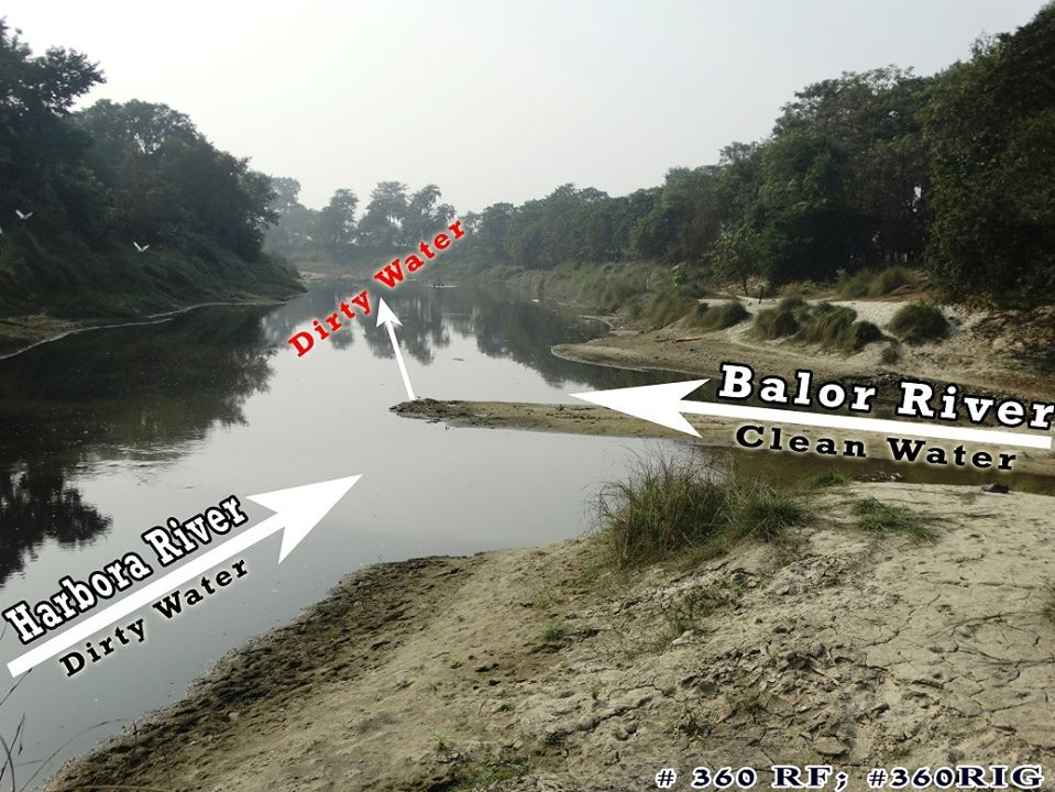 Water Pollution image